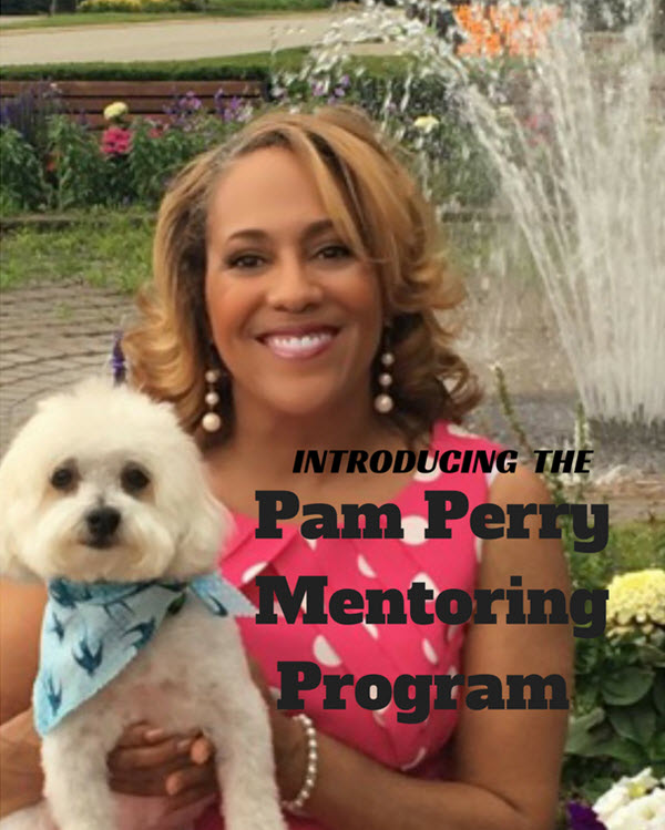 join the pam perry mentoring program