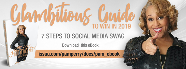 pam perry pr ebook